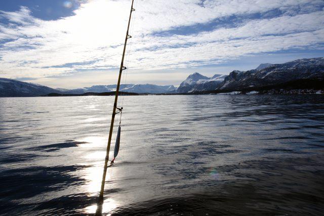 fischen-norwegen